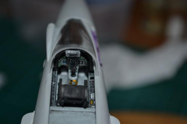 """EF - 2000 """"TYPHOON"""" Single Seater . ITALERI  Echelle 1/48 290237DSC0166"""