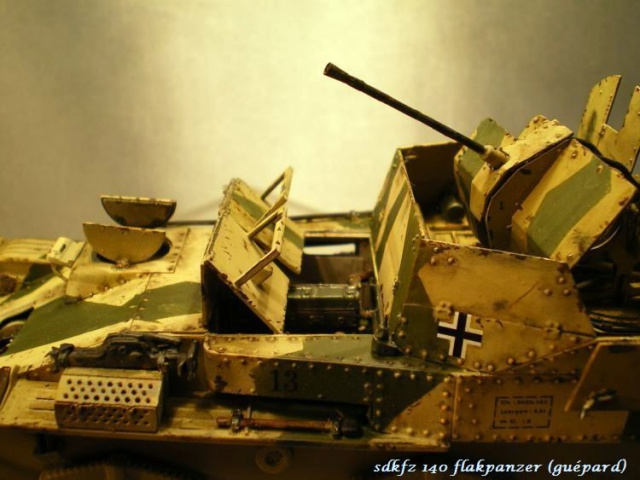 sd.kfz 140 flakpanzer (gépard) maquette Tristar 1/35 292214IMGP3201