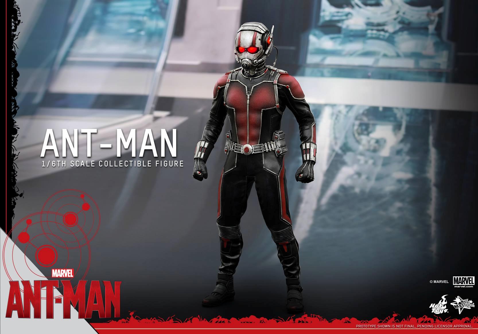 HOT TOYS - Ant-Man - Ant-Man 292901112