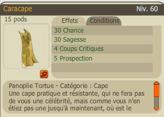 Chapeau&cape Nowel 2007 et caracape 294141caracape