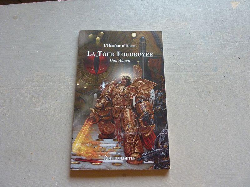 Le Roi Sombre / La Tour Foudroyée (Bibliothèque Interdite) 296752toursombre2