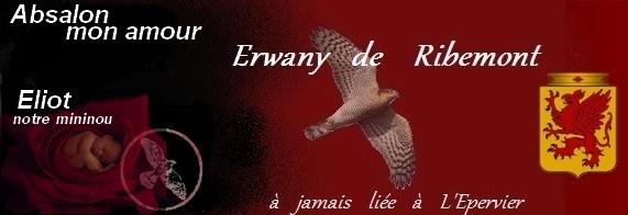 L Ordre du Saint Esprit 298455mininou1
