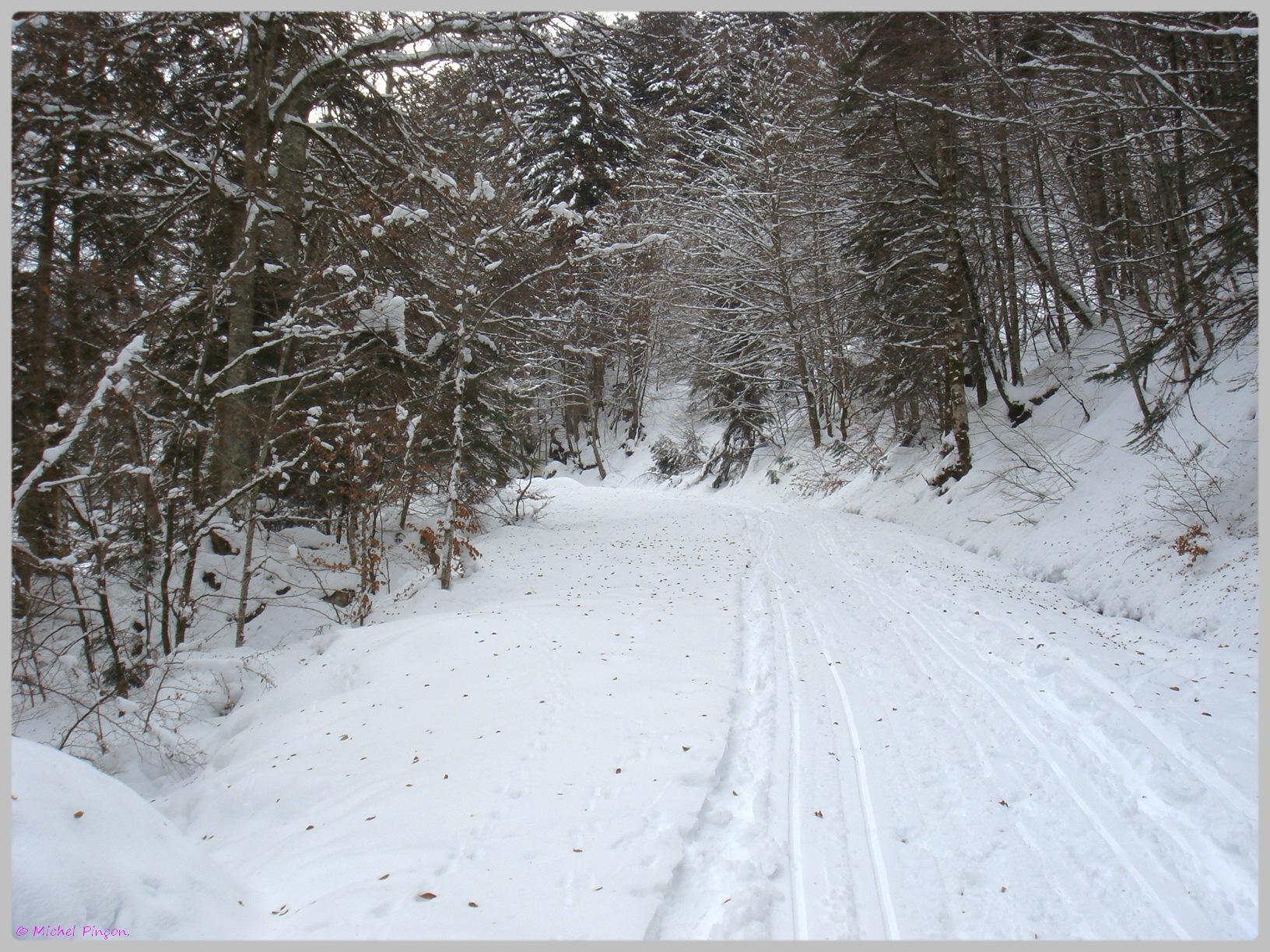 Une semaine à la Neige dans les Htes Pyrénées - Page 2 299049DSC011867
