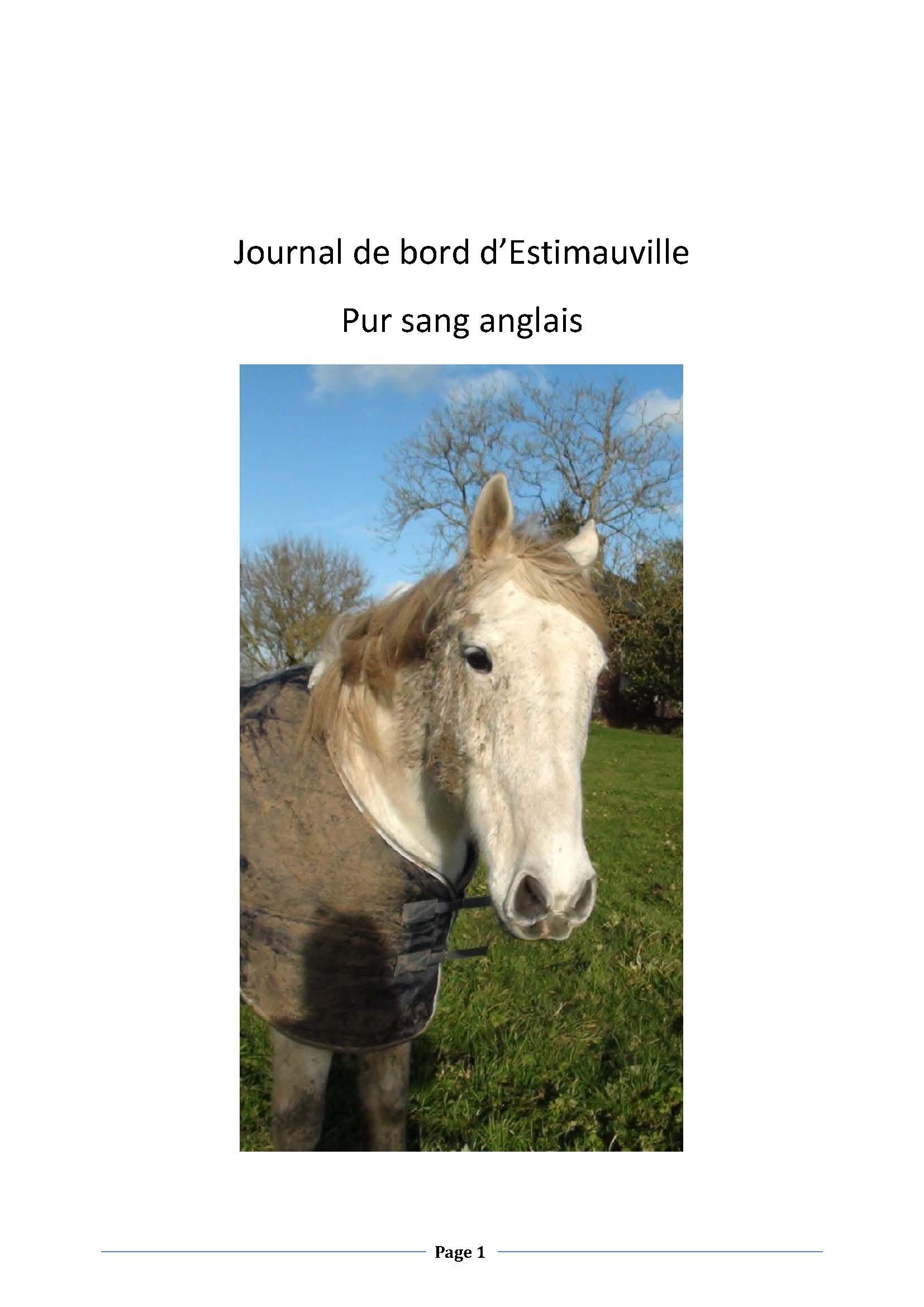 (dpt 76) ESTIMAUVILLE Pur sang Anglais, né en 2001, hongre, en FA chez Michèle76 - Page 5 299154janvierPage01
