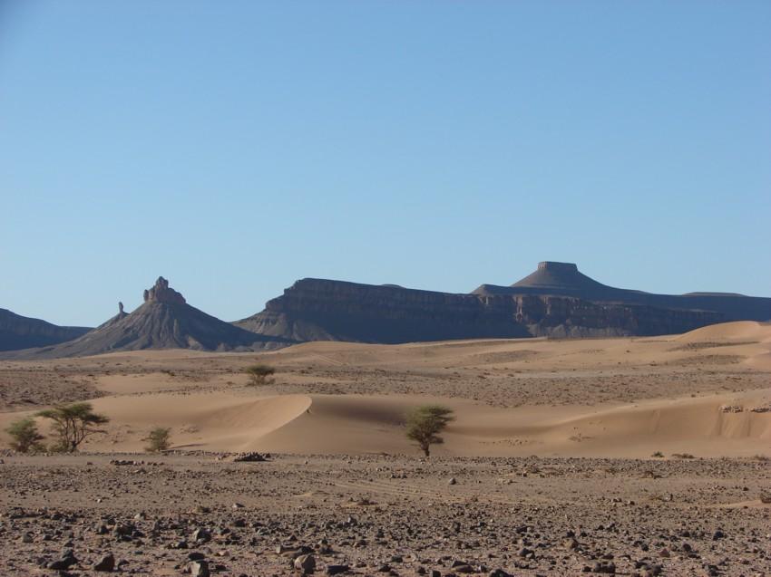 retour maroc 2012 - Page 2 300585131