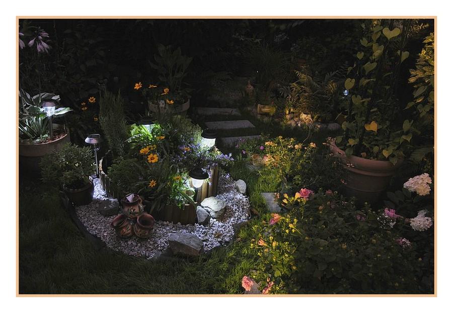 Nouvel essai photos de nuit dans mon jardin série 1 301197017
