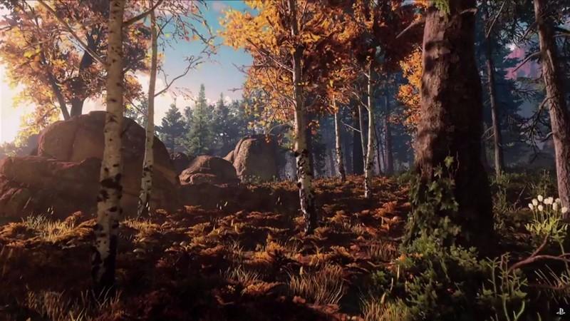 Forêt Flamboyante
