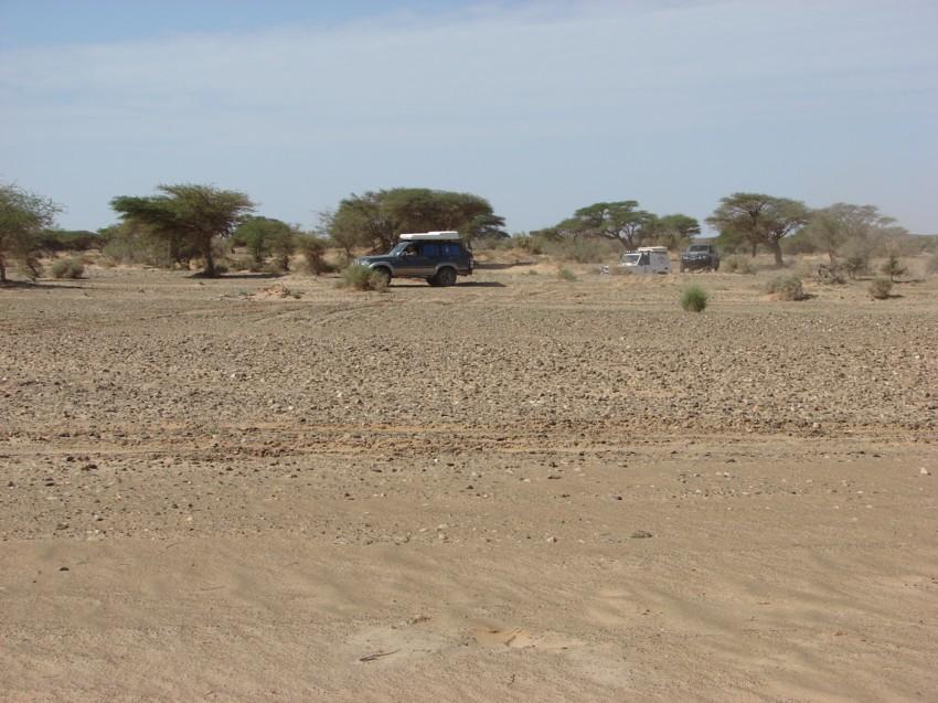 retour maroc 2012 - Page 2 303506064