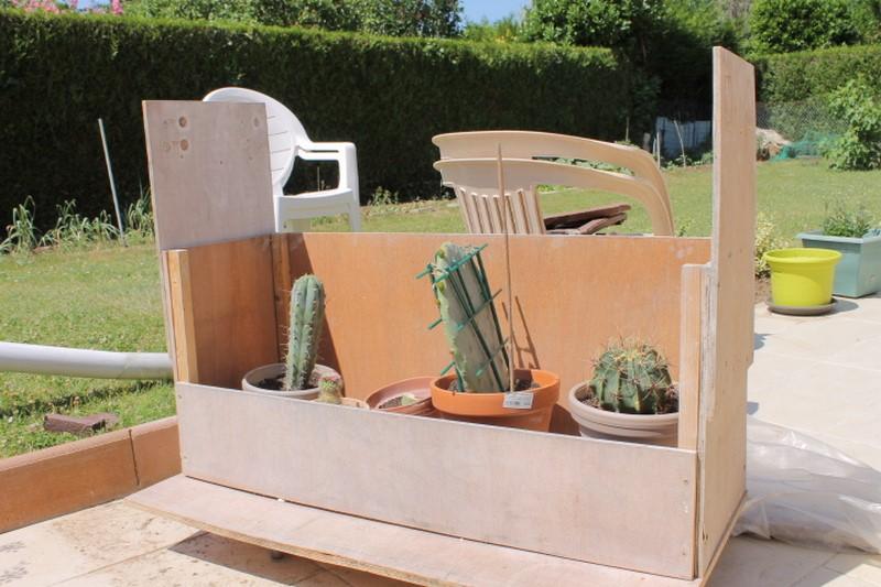 Mon coffre a cactus! 304017IMG1376Copier