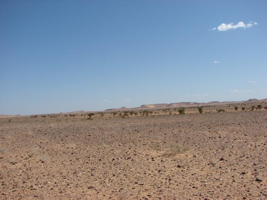 retour maroc 2012 - Page 2 304774100