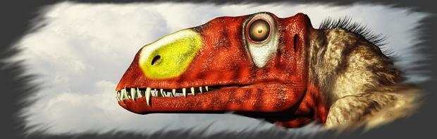 Elevage des Dimorphodon