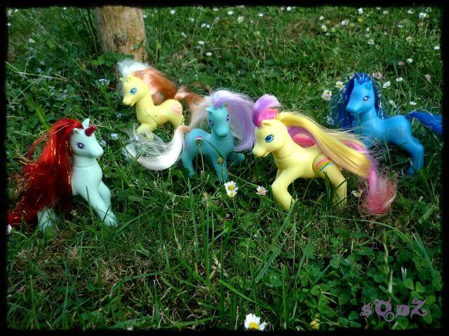 Les petits poneys de sOoZ - G1 à G5 309132P1140836