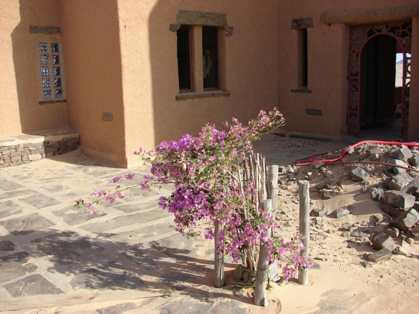 retour maroc 2012 - Page 2 312252055