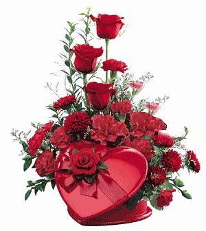 Tubes roses 312764ee18136d