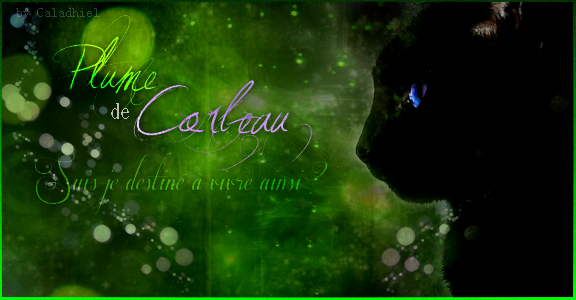 Yeah ~ C'est Caladhiel \o/ 315528SignaturePlumedeCorbeau