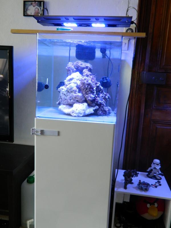 Aka's Reef Cube ! 320019DSCN0073