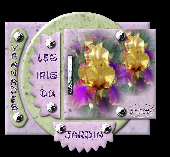 "29- ""Les Iris du Jardin "" 32269229LesIrisduJardin2"