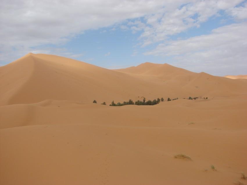 retour maroc 2012 - Page 2 329150176