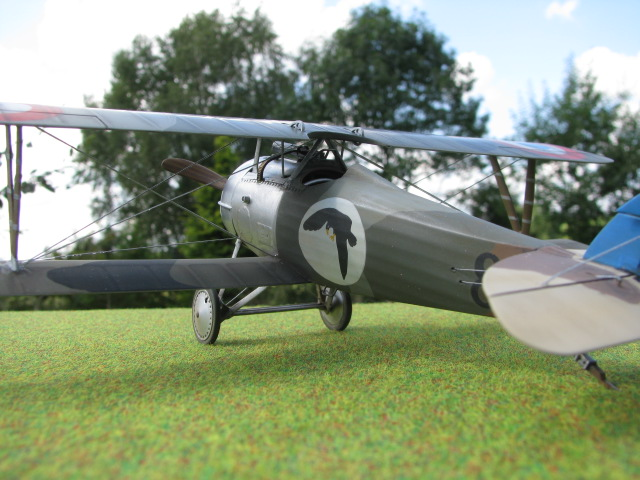 Nieuport 24 Roden 1/32 Modèle terminé. 332510IMG2564