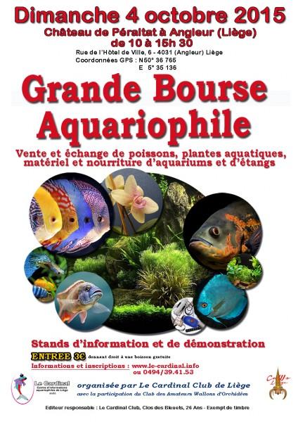 escargots et Clibanarius tricolor 1er partie 332567frwebbourse2015projet01