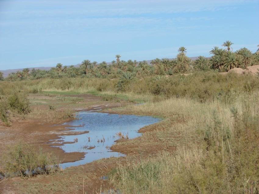 retour maroc 2012 - Page 2 333494156