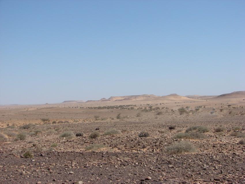 retour maroc 2012 - Page 2 333838097
