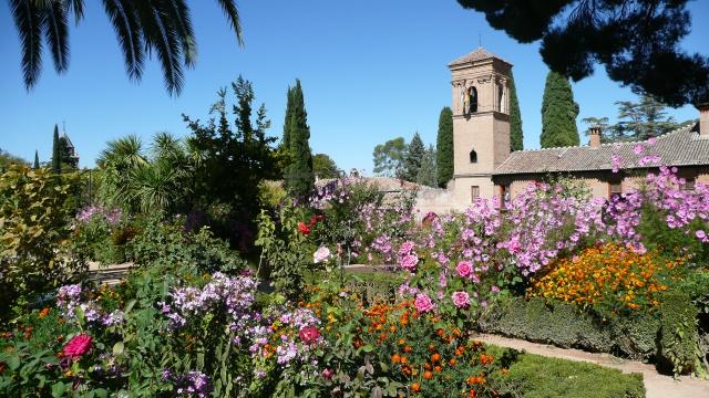 Andalousie Octobre 2011 336823P1100922