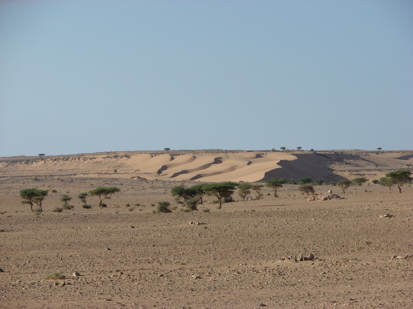 retour maroc 2012 - Page 2 337205108