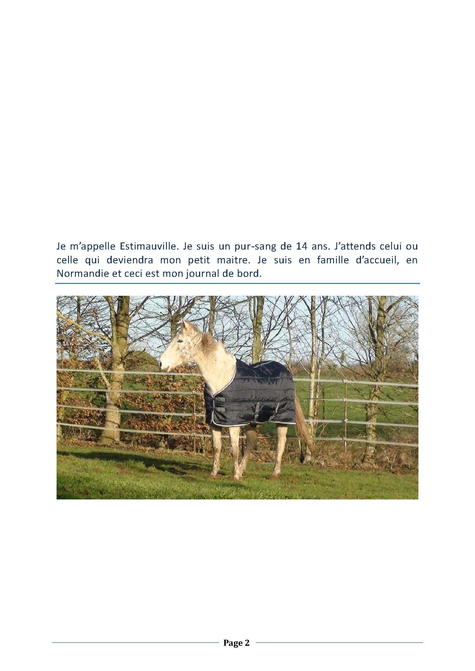 (dpt 76) ESTIMAUVILLE Pur sang Anglais, né en 2001, hongre, en FA chez Michèle76 - Page 5 340794janvierPage02