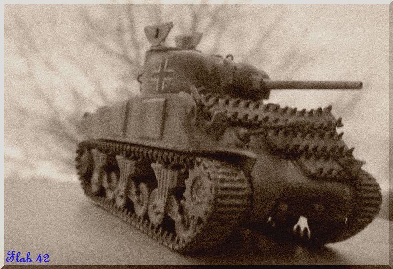 Beutepanzer Sherman M4A2 - Dragon - 1/72ème  341883termin7