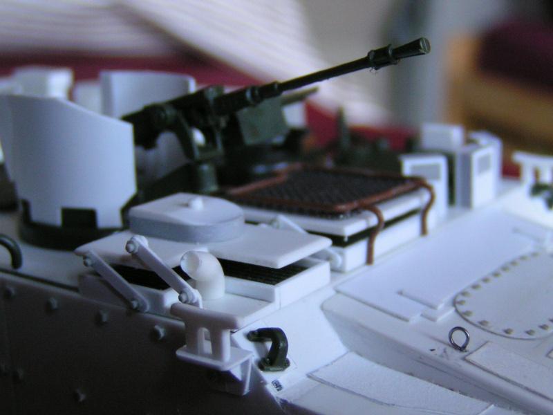 Arisgator, char amphibie Italien moderne 345811PICT0353