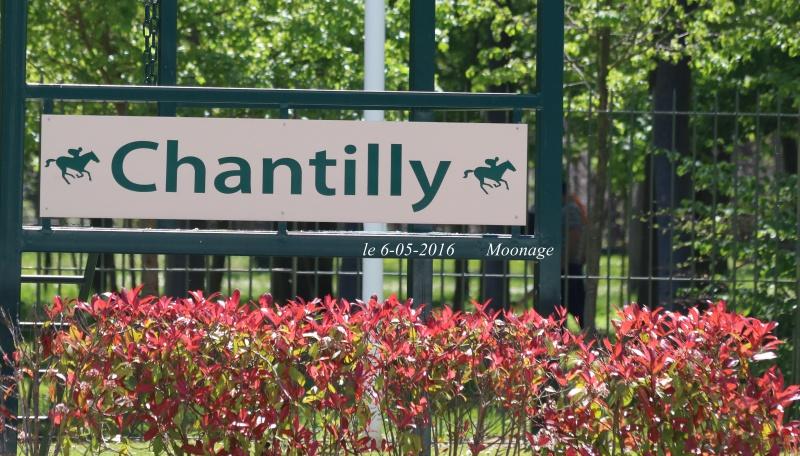 Photos Chantilly 6-05-2016 3486775J6A0796