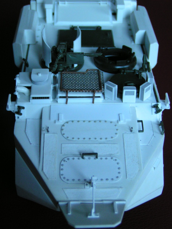 Arisgator, char amphibie Italien moderne 356097PICT0352