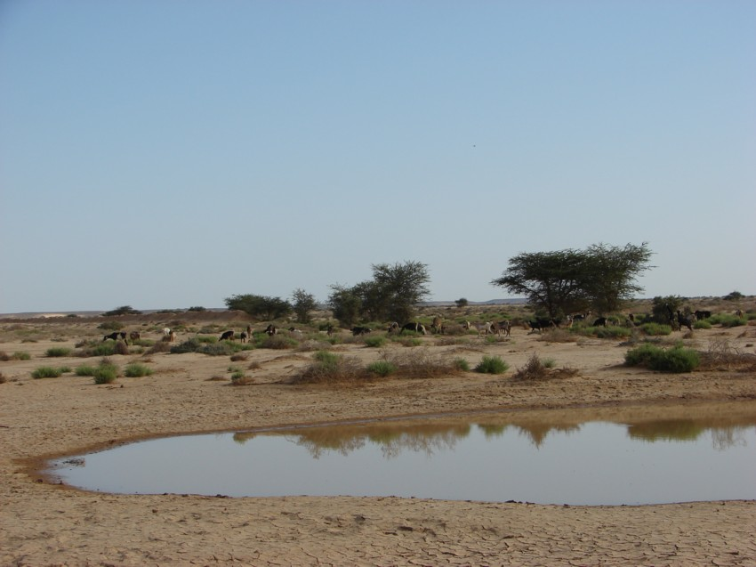 retour maroc 2012 - Page 2 367155060