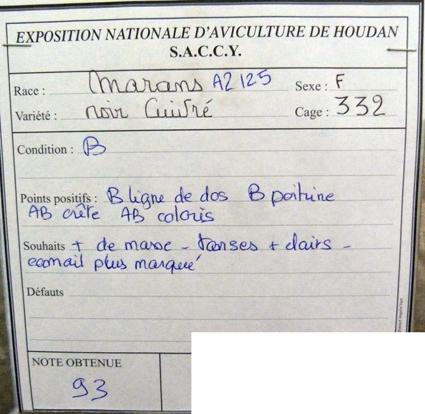 exposition d'aviculture Foire ST MATTHIEU 27 et 28 Septembre 2014 - Page 3 369302P1150675