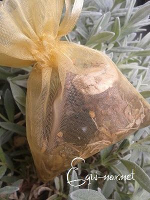 Tutoriel : les plantes magiques 373492sachetprotection