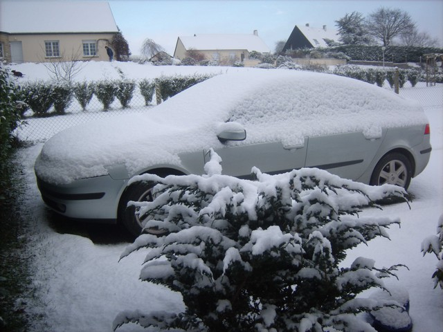 Mercredi 06 janvier 2010 - (Neige à Pont Farcy - 7 à 10 cm) 373761Jan06329