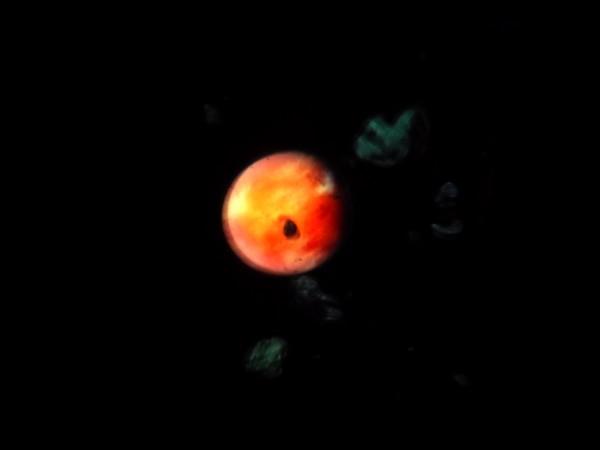 WDW Mai 2011 et la fete continue en Mars 2012 - Page 40 374548wdw2012835