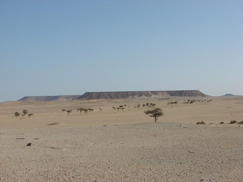 retour maroc 2012 - Page 2 375054057