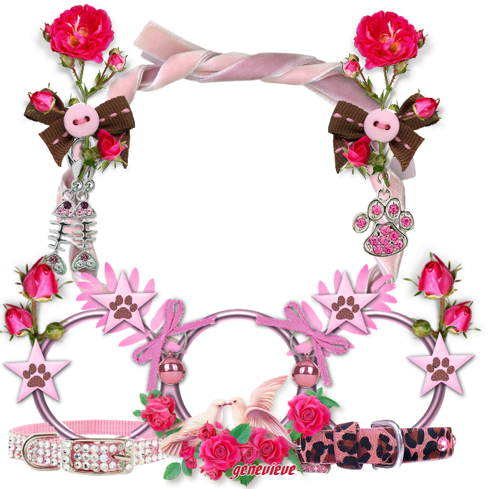 cluters 14 379800rose