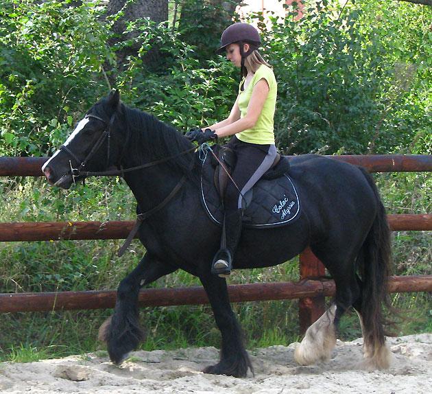 Black Opal et Rosie 380521IMG0622