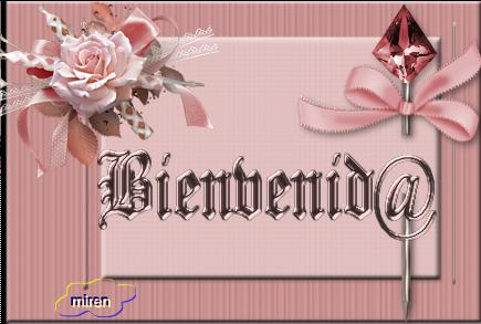 cartel bienvenid@ 3816331Bienvenid