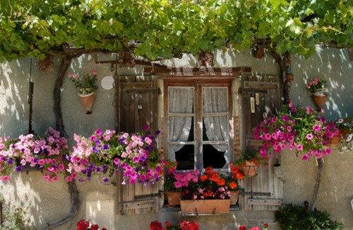 Des fenêtres d'hier et d'aujourd'hui. - Page 2 3859133018703264630407449011092053838n