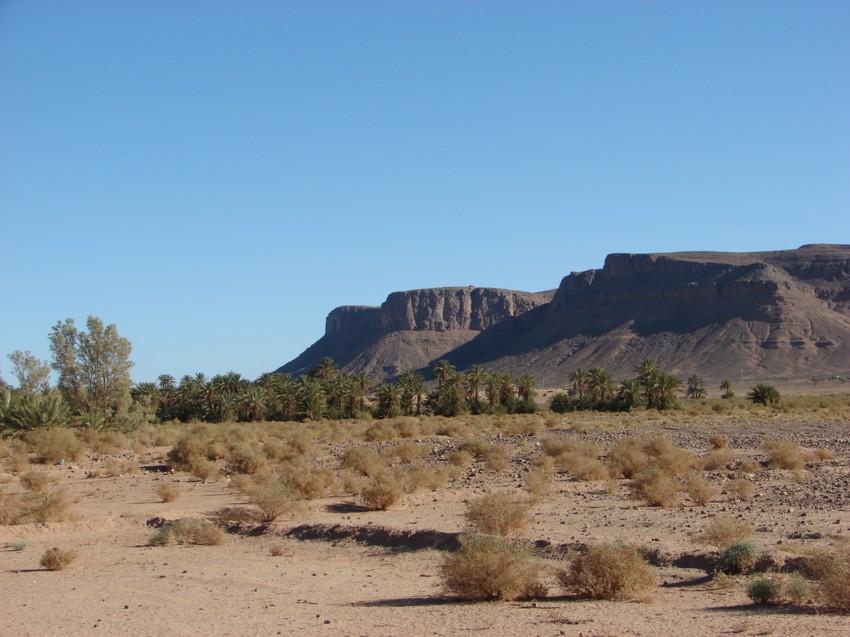 retour maroc 2012 - Page 2 388608157