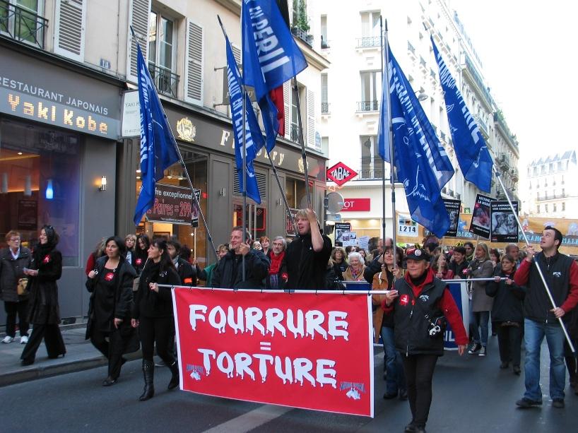 07 - Marche contre la fourrure - Paris 19 novembre 2011. 389987IMG6483