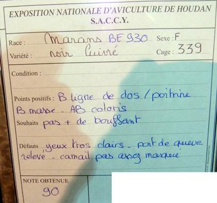 exposition d'aviculture Foire ST MATTHIEU 27 et 28 Septembre 2014 - Page 3 393208P1150691