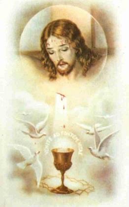 Juillet mois du précieux sang de Jésus PRIONS  - Page 2 395823PrcieuxsangdeJsus