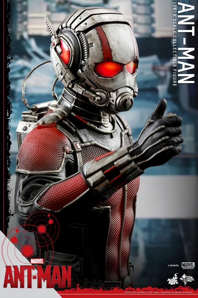 HOT TOYS - Ant-Man - Ant-Man 403107105