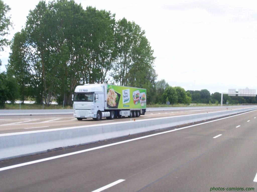 TFMO. (Transports Frigorifiques du Mont d'Or)(Lissieu, 69) 403797photoscamions06IIV1119Copier