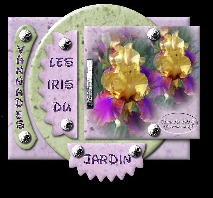 "29- ""Les Iris du Jardin "" 40384029LesIrisduJardin"